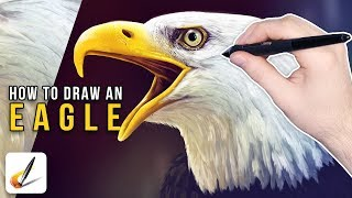 How To Draw A Bald Eagle (Corel Painter Tutorial) [Draw This #65]