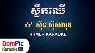 ស្លឹកឈើ ស៊ីន ស៊ីសាមុត ភ្លេងសុទ្ធ - Slek Chher Sin Sisamuth - DomPic Karaoke