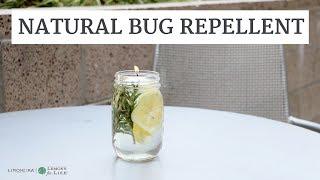 Natural Bug + Mosquito Repellent | Summertime Hacks | Limoneira