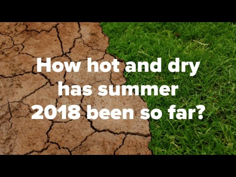 UK weather news: how hot and dry has summer 2018 been so far?