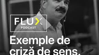 FLUX Podcast   Ep. 1   Exemple de criză de sens   Prof.univ.dr. Mircea Miclea