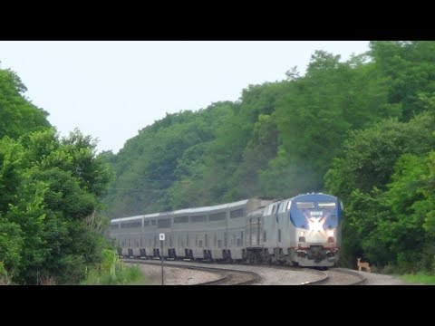 Amtrak Train Hits Deer