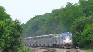 Amtrak Train Hits Deer