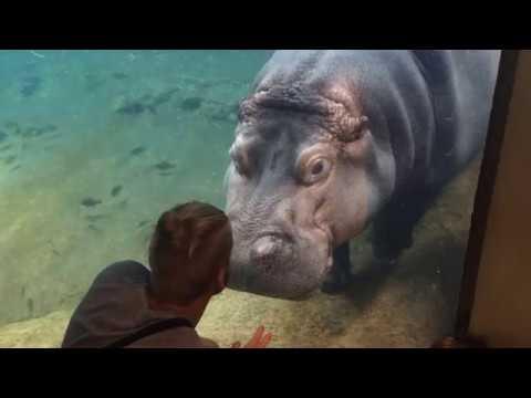 Adventure Aquarium - Camden - NY trip
