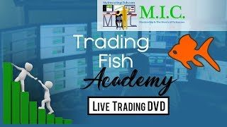 SECRETS REVEALED!! MUST WATCH !! Daily Recap. Charting. Strategies. Risk Management.