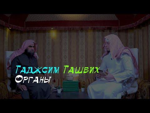 Пусть послушает это каждый, кто обвиняет саляфитов в уподоблении Аллаха творениям и придавании тела