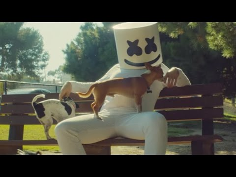 Thumbnail: Marshmello - Ritual (feat. Wrabel) [Official Music Video]