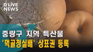 [중랑] 중랑 특산물 '먹골청실배' 상표…