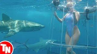 Youtuber é mordida por tubarão durante gravação de vídeo subaquático