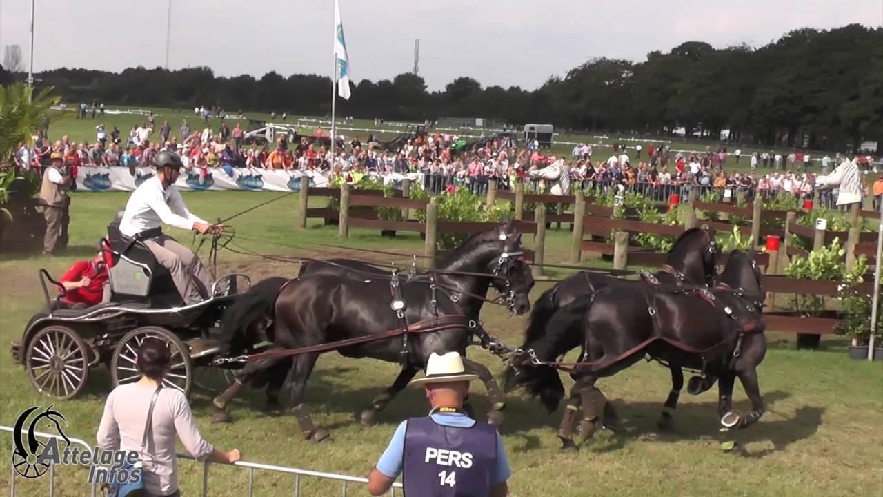 Bildresultat för edouard simonet horses