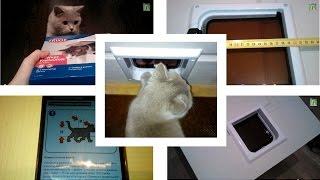 Установка кошачьей двери