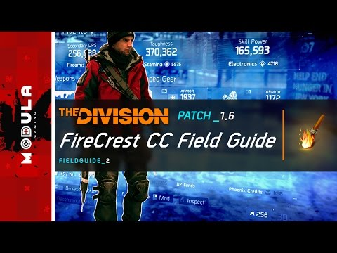 survival matchmaking the division