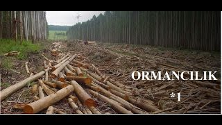 Ormancılık | Farming Simulator 2017