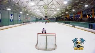 Jr Gulls Hockey Squirt Goalie Celly Compilation | Runstar Media