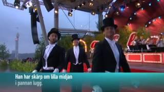Måns Zelmerlöw - Jazzgossen (live at Allsång på Skansen 2013)