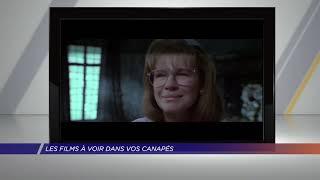 Yvelines | Dans vos canapés : la sélection de Vincent Mirabel, professeur de cinéma