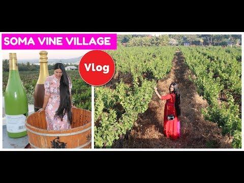 VLOG : Soma Vine Village Nashik ! A Beautiful Weekend Getaway Near Mumbai|Sushmita's Diaries
