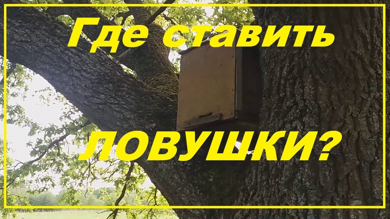 foto-krupnim-samodel-pchelovod-ru-video-porno
