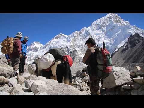 Everest Base Camp Trekking - Trekking In Nepal
