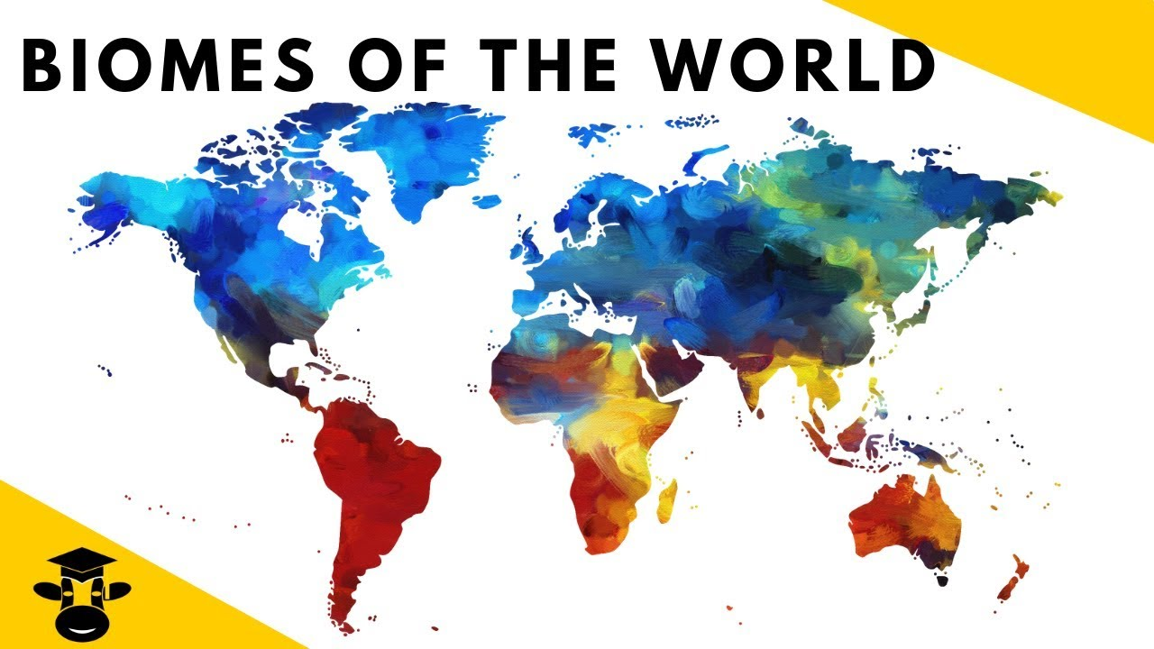 Biome Map Of Earth.7 Biomes Of The World For Kids Youtube