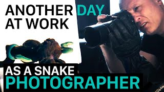 Just Another Day at Work as a Snake Photographer (Full Clip - COLD INSTINCT project)