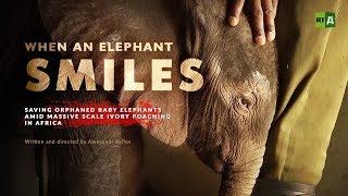 When an Elephant Smiles. Saving orphaned baby elephants amid massive scale ivory poaching in Africa