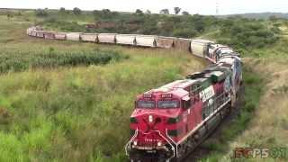 Ferromex: Directo Tepic-Guadalajara en Curvas de la Primavera y Carretera a Nogales