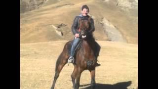 гагатли лошади