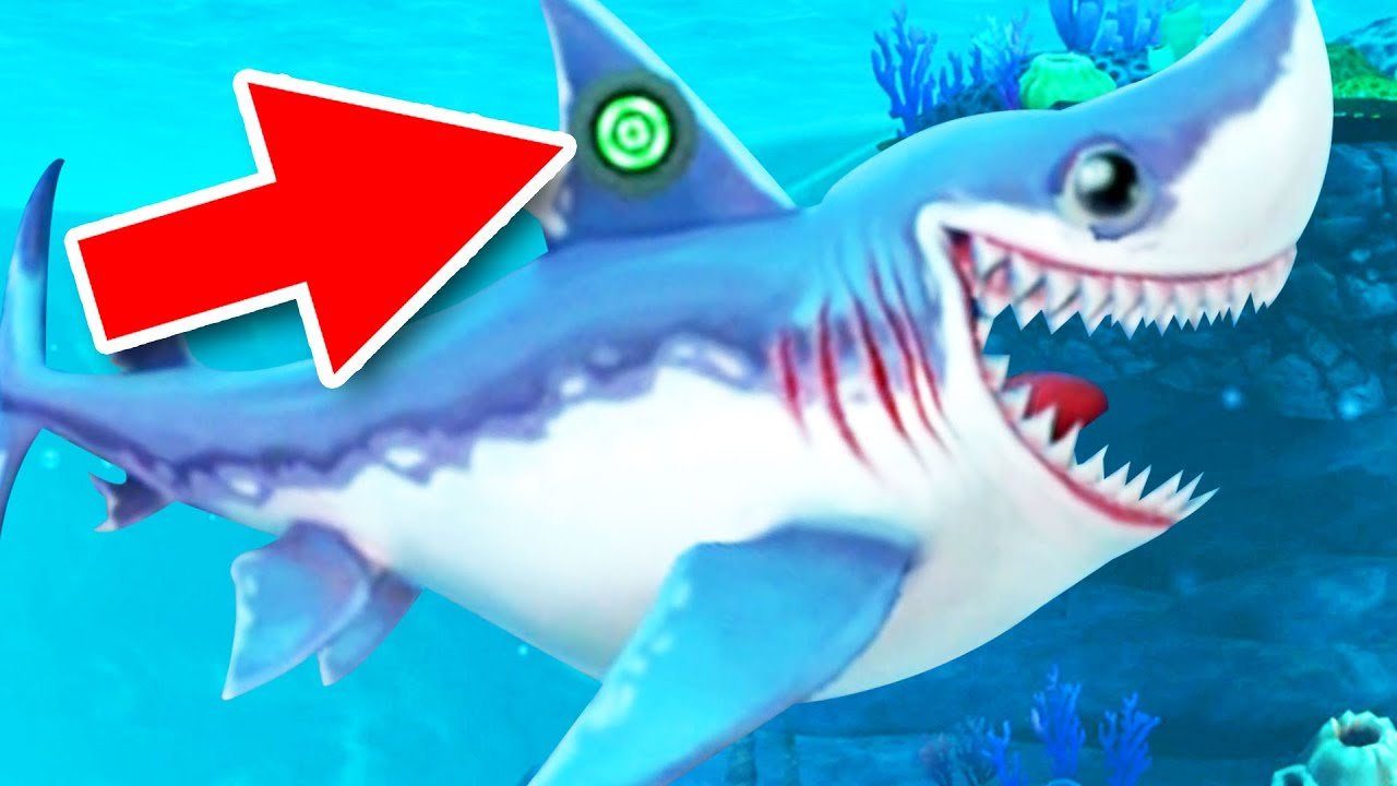 hungry fish hd hacked