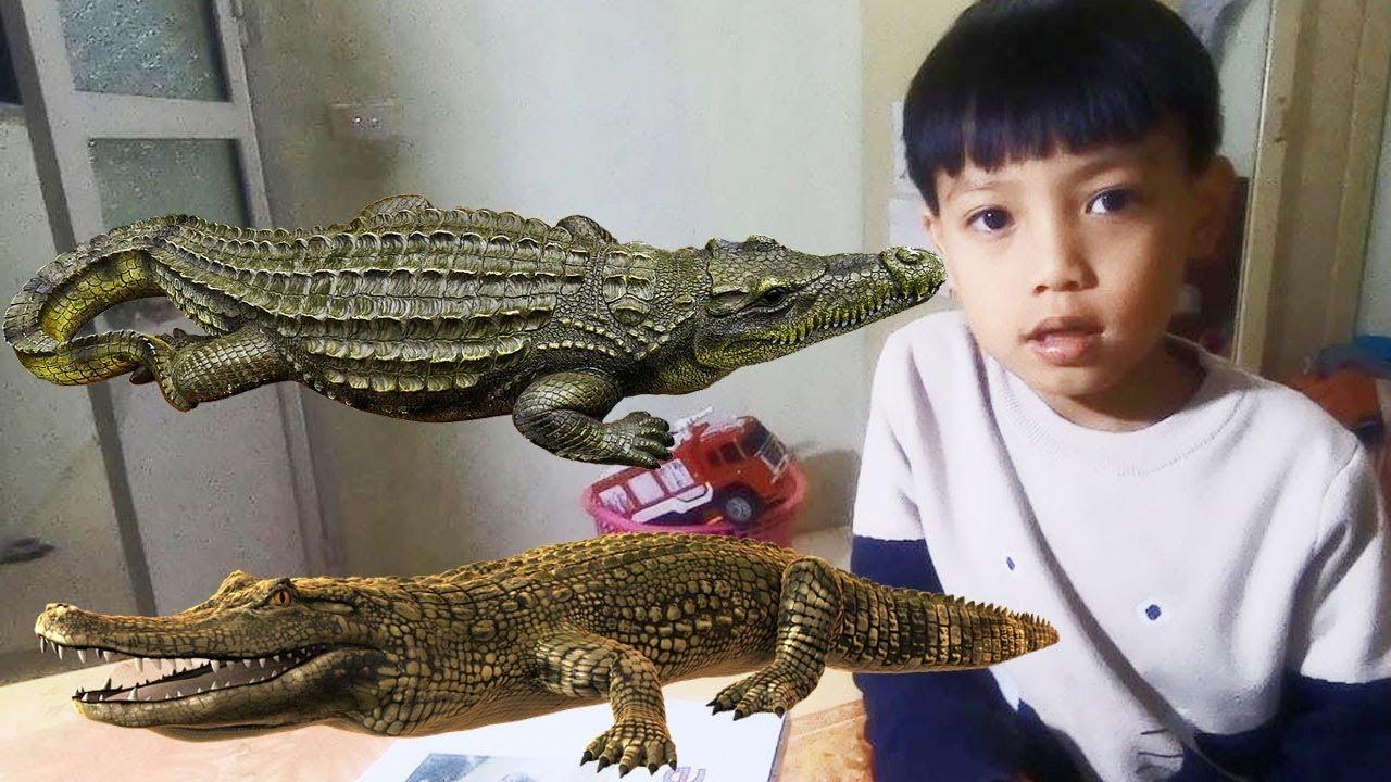 Bé học tiếng anh động vật: Dạy bé lớp 1 đọc tên con CÁ SẤU bằng tiếng anh bài 53
