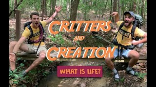 Critters & Creation 1 (What is Life?)