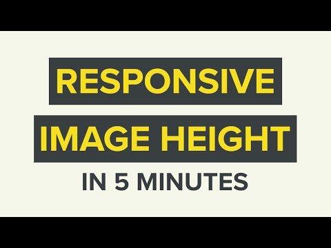 Responsive Image Height CSS Tutorial