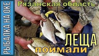 Рыбалка на Оке, ФИДЕР, ЛЕЩЕЙ ПОЙМАЛИ! Село Половское, июнь 2019г.