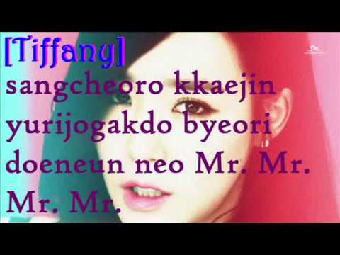SNSD- Mr.Mr. Lyrics