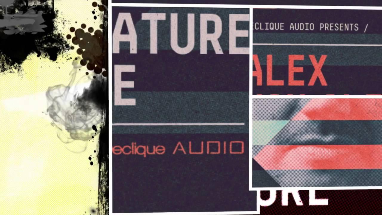 Alex Van Alff 'Signature House' - House Samples & Loops - By Loopmasters #1