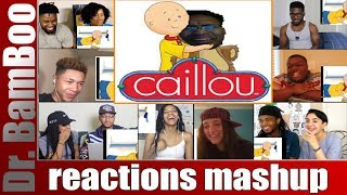 CAILLOU: EXPOSED BY BERLEEZY REACTIONS MASHUP