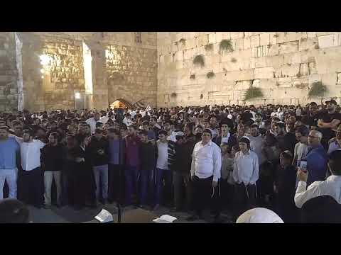 צום תשעה באב בכותל המערבי ירושלים .  צילום. חדשות הכותל המערבי