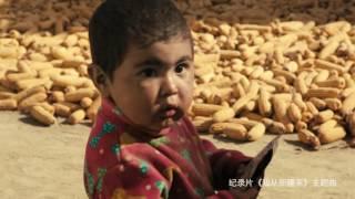 尼格买提友情献唱大型纪录片《我从新疆来》主题曲《我从哪里来》MV