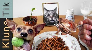 EATING ANIMAL FOOD!! |#29 KLUNATIK COMPILATION    ASMR eating sounds no talk