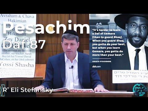 Daf Yomi Pesachim Daf 87 By R' Eli Stefansky