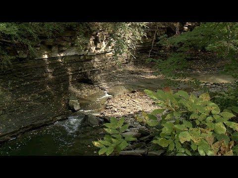 Euclid Creek Reservation - Cleveland Metroparks