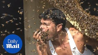 Indian honey collector stuffs his mouth with BEES!!