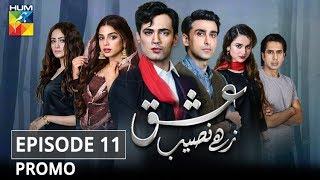 Ishq Zahe Naseeb Episode #11 Promo HUM TV Drama
