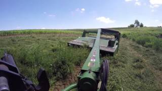 Cutting First Crop - John Deere 4640