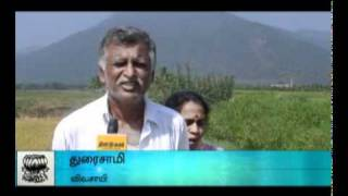 Video Forest Department Warning-DINAMALAR download MP3, 3GP, MP4, WEBM, AVI, FLV Maret 2018