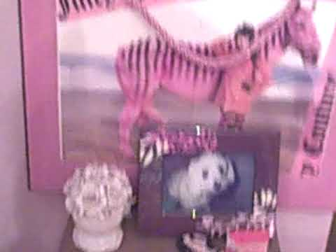 juicy couture room tour youtube