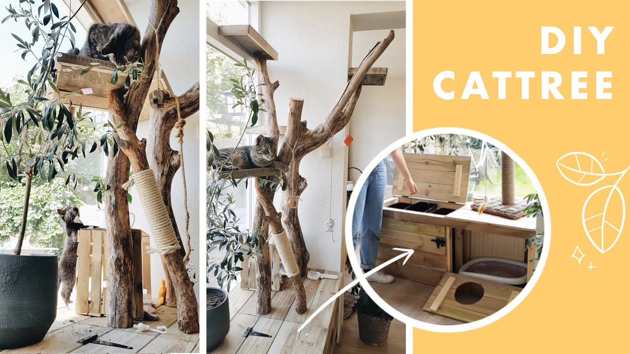 I Built A Diy Cat Tree Using Real Branches It Has A Built In Litter Box Youtube