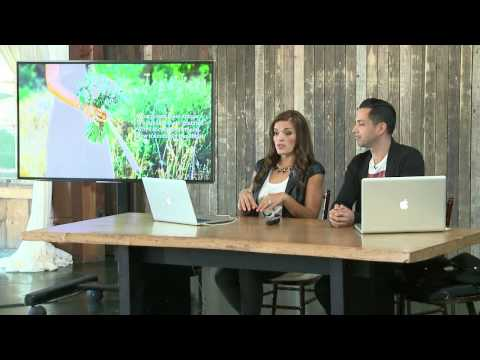 How to Pitch Yourself as a Second Shooter with Jasmine Star   CreativeLive