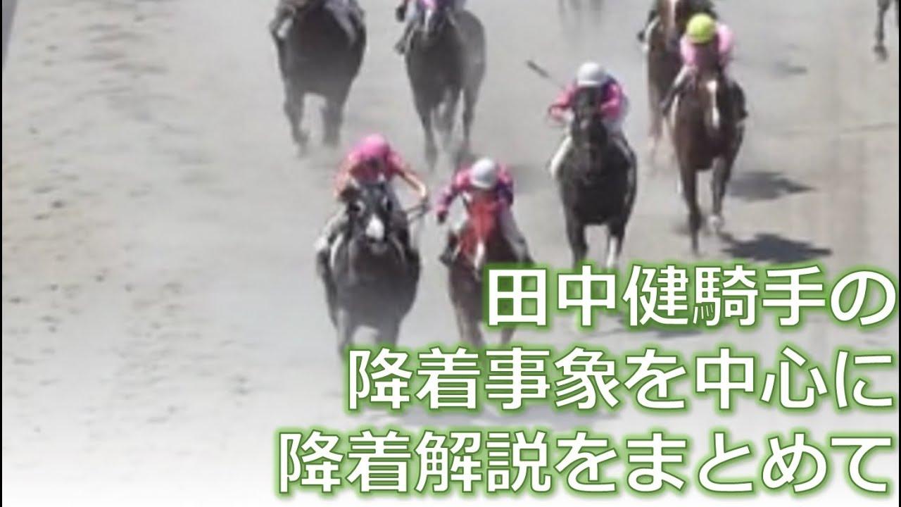 田中健騎手とテイエムイブシギンの事象を中心に降着解説をまとめる感じで