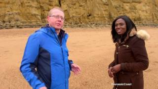 Fossil Hunting On The Jurassic Coast | This Morning